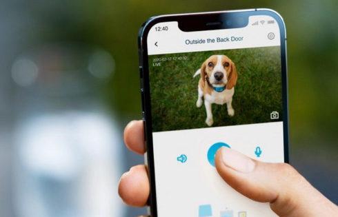 Smart πορτάκι για σκύλους; Κι όμως υπάρχει!